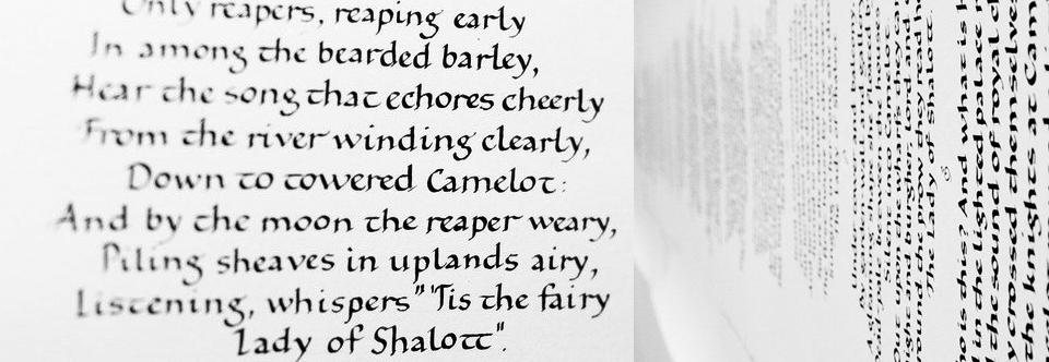 Интенсив «Европейская каллиграфия. Базовое письмо» с 26 по 30 июня!