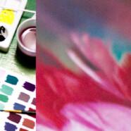 Вечерняя группа онлайн-курса «Цветоведение» с 11 ноября!