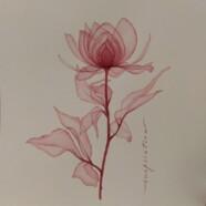 Приглашаем вас на мастер-класс «Акварельные цветы в технике прозрачной живописи» 31 января!