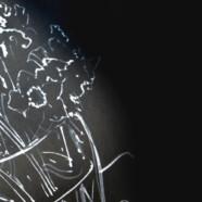 Очный курс «Каллиграфическое рисование» с 15 сентября!